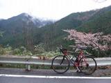 2008_04190027